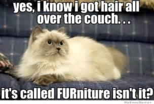 furniture puns furniture weknowmemes