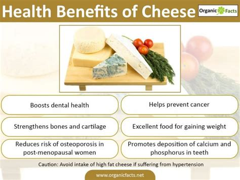 Health Benefit Of Cottage Cheese by 5 Wonderful Benefits Of Cheese Organic Facts