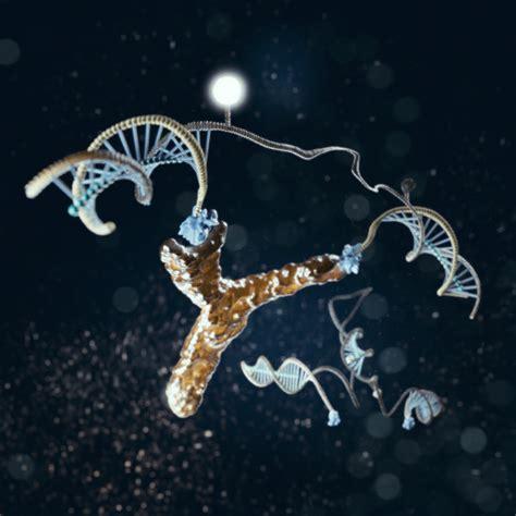 costo test dna hiv e altre malattie nanomacchine di dna per test