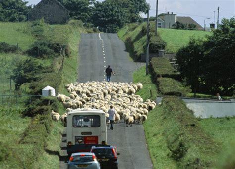 Irland Auto Mieten by Ihr Mietwagen Von Den Irland Experten Mietwagen Irland De