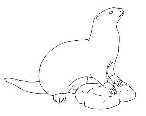 free coloring pages of river otter