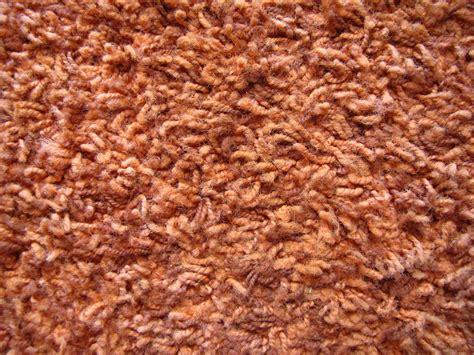 Shag Rug On Carpet by Shag Carpet By Reirei44 On Deviantart