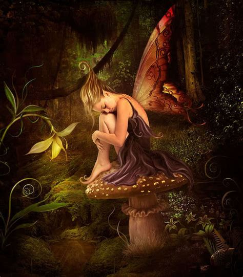 beautiful fairies beautiful fairies fairies photo 17416869 fanpop