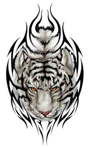 white tiger tattoos tiger images designs