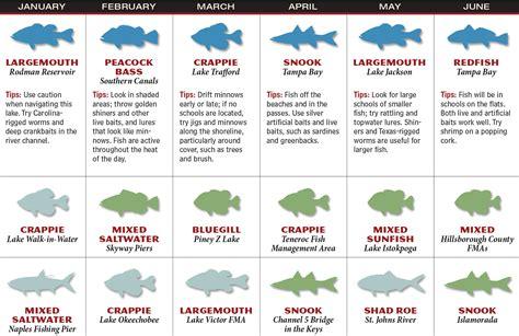 florida fishing forecast