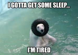 Tired Meme - tired polar bear