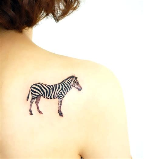 zebra tattoo meaning simple zebra tattoo idea
