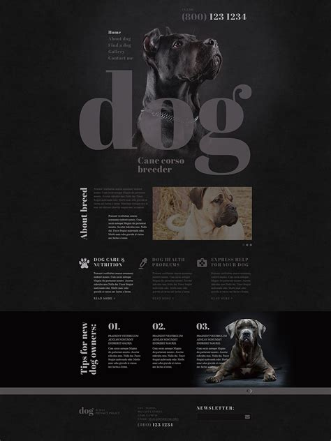 website templates for kennels template 53411 ensegna themes