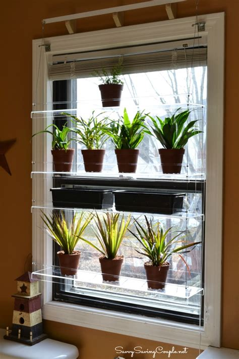 window plant shelves enhance your window s view with beautiful views window shelves savvy saving