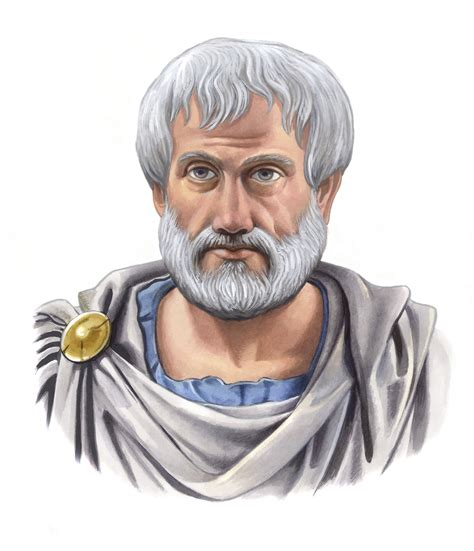 aristotle biography video aristotle hierarchy to all life in the universe