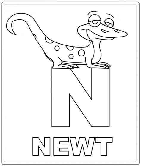 newt free colouring pages