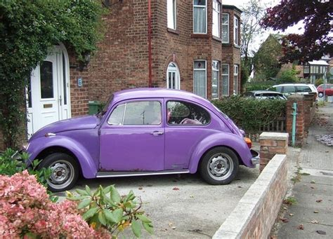 volkswagen beetle purple purple slug bug vw love pinterest
