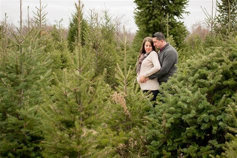 jessica and brian christmas tree farm maternity session