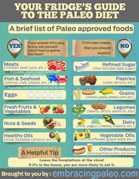paleo diet a and easy guide for beginners the secrets of rapid weight loss and a healthy lifestyle using the paleo diet books a no needed beginners guide to paleo diet lifestyle