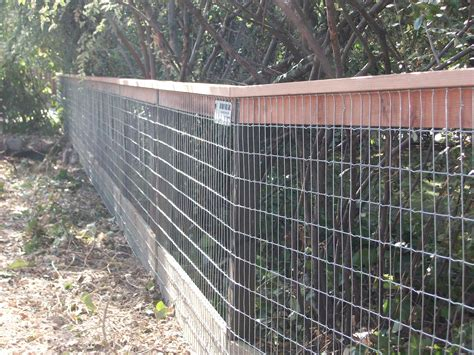 hog wire fence adding a top cap to a wire fence make a great statement for your back yard by arbor fence inc