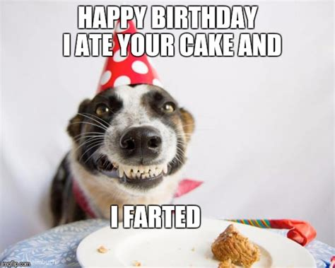 Birthday Dog Meme - birthday dog imgflip