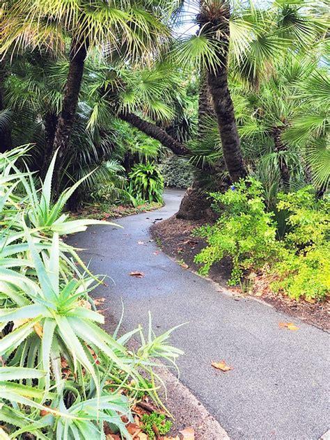 tropical landscaping ideas tropical garden design ideas to inspire your outdoor space