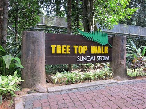 Trees Top Murah tree top walk hutan lipur sungai sedim tempat percutian