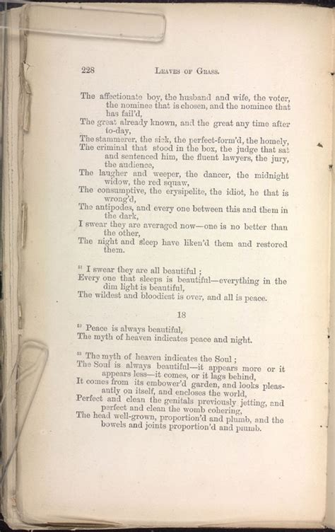 Walt Whitman Sleepers by Leaves Of Grass 1871 72 Page Images The Walt Whitman