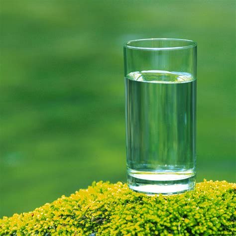 immagini di bicchieri immagini bicchiere foto bicchiere di vino bianco images