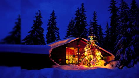 Cabins For New Year by New Year Tree Near Forest Cabin Wallpapers And Images