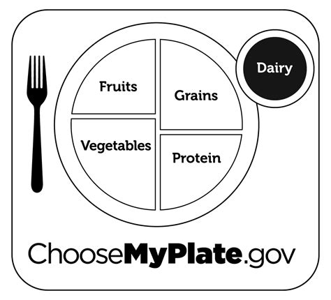 coloring page food plate grains coloring pages preschool myplate printables and