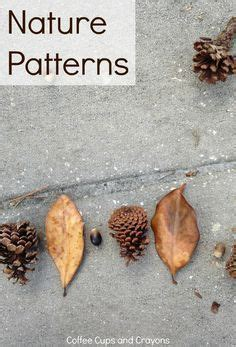 patterns in nature kindergarten lesson 4396 best math is fun images on pinterest preschool