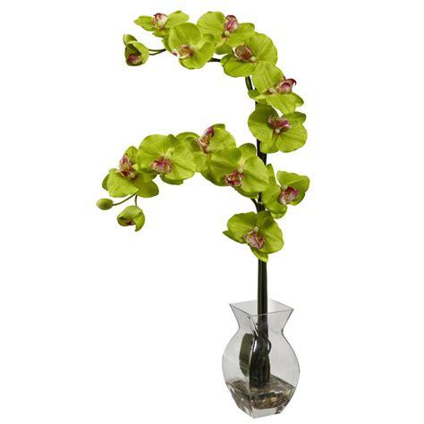 Silk Flower Arrangements In Vases by Phalaenopsis Green Orchid Silk Flower Arrangement With