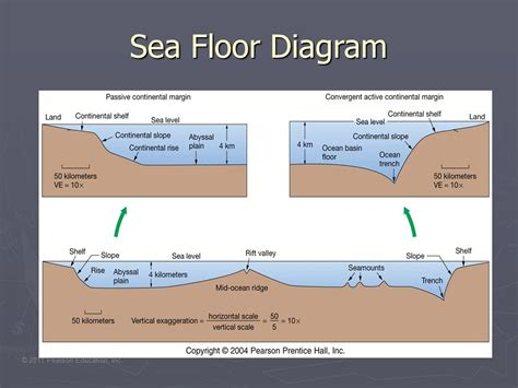 diagram of floor plate tectonics ppt