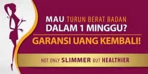 Agen Starbio Plus Di Makassar agen xamthone plus makassar pembelian xamthone plus di