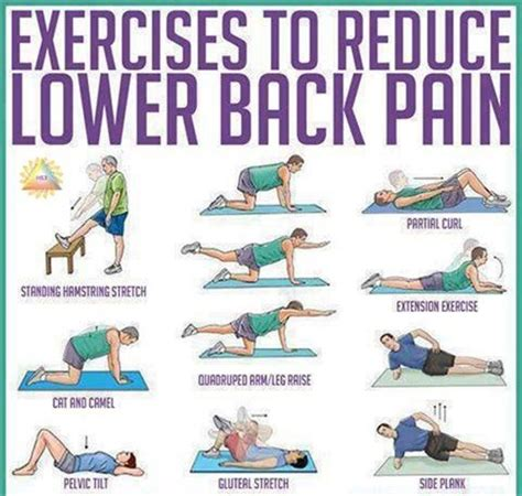 back exercises for your back strong back strengthen back muscles freak of nature