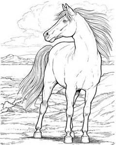 dibujos caballos colorear imprimir gratis caballos pintar