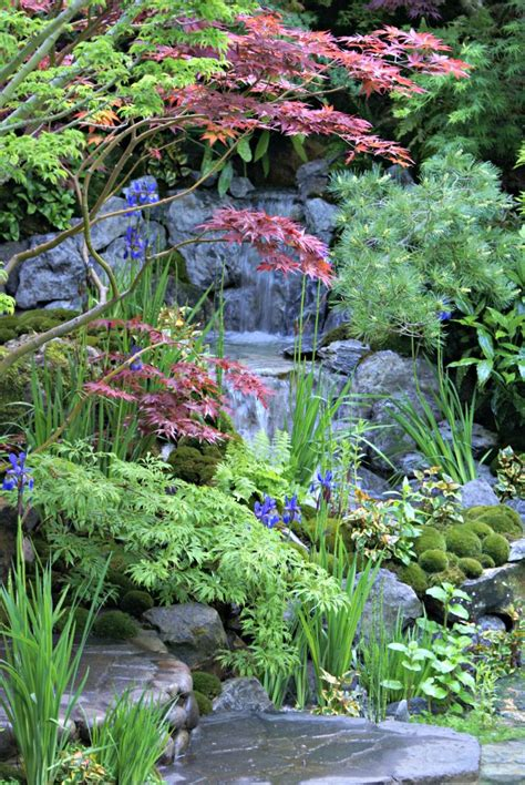 447 best images about japanese gardens on