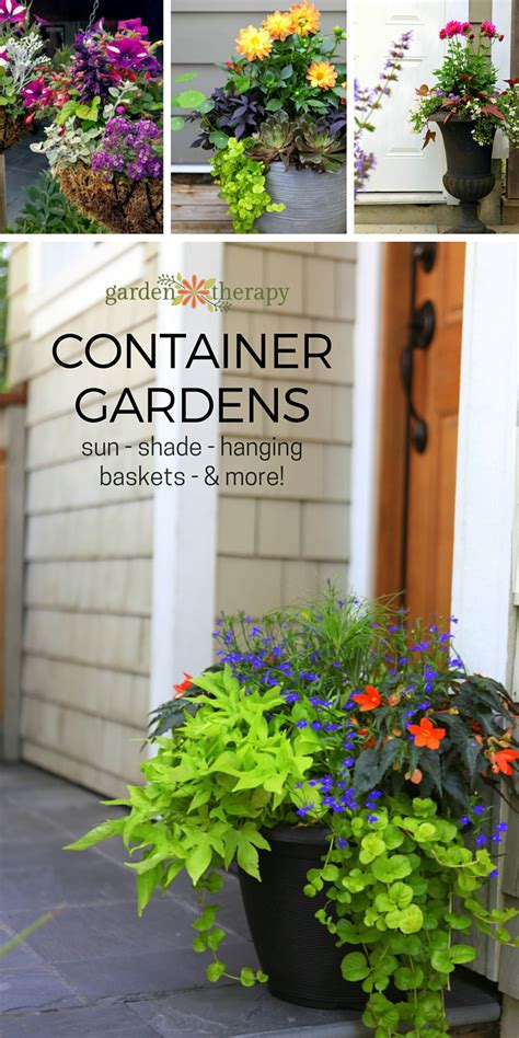 summer container garden ideas decorative ideas for creating a summer container garden