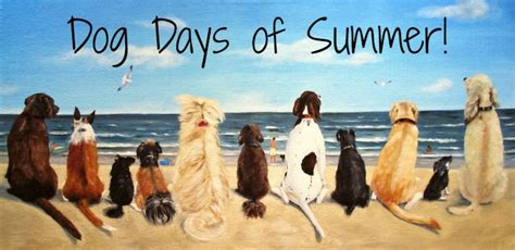 dog days of summer blue moon gift shops