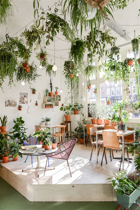25 best ideas about indoor plant decor on pinterest best 25 hanging plant ideas on pinterest hanging plants