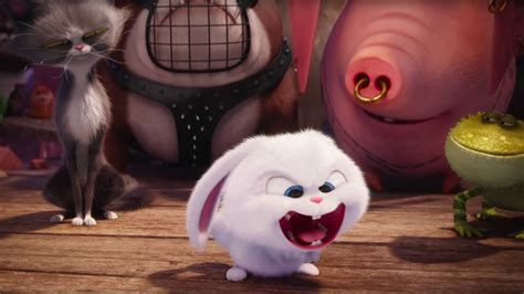 the secret life of pets craft dog house free printable the secret life of pets opens with monster friday at box