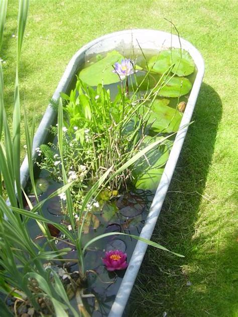 badewanne zink 7 tips to integrate water in the garden