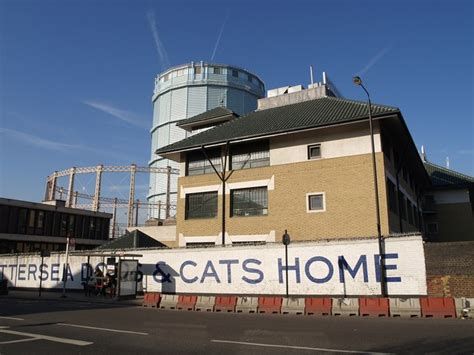 battersea dogs cats home simple english wikipedia