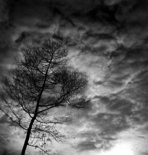 gambar pemandangan alam  indah hitam putih gambar