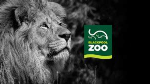 printable blackpool zoo vouchers blackpool zoo offers vouchers get 20 off tickets today