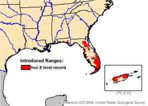 pythons in florida map march of the python bowilliams