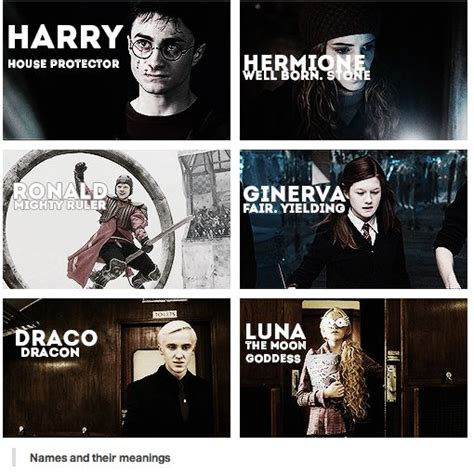 harry potter names name 100 harry potter characters wroc awski informator internetowy wroc aw