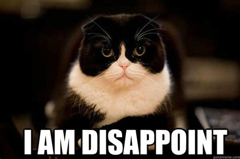 Disappoint Meme - i am disappoint disappointed kitty quickmeme