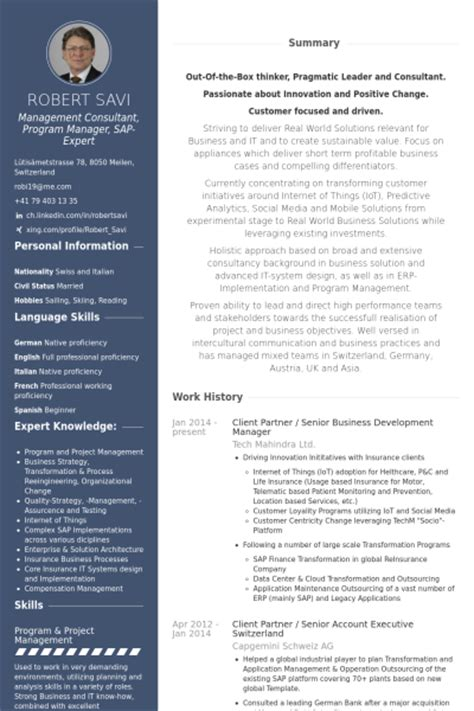Cv In Business Business Development Resume Sles Visualcv Resume
