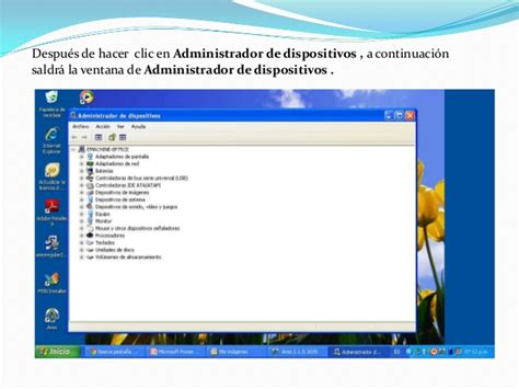 tutorial de nat tutorial de uso basico en windows xp