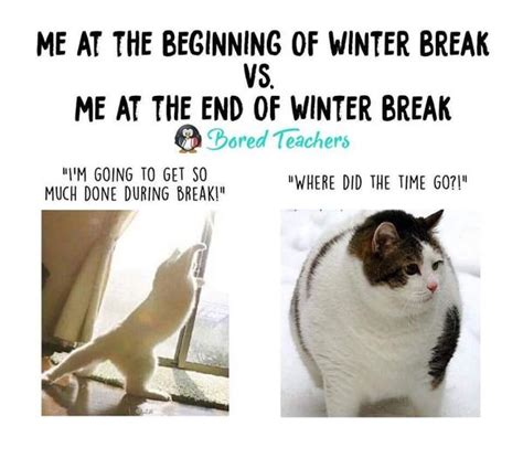 Winter Break Meme - 15 winter break teacher memes that ll make you die