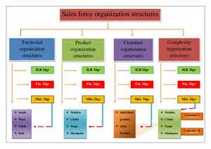 sales force organization structure image