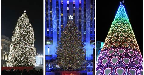 28 best real christmas trees liverpool the duke of
