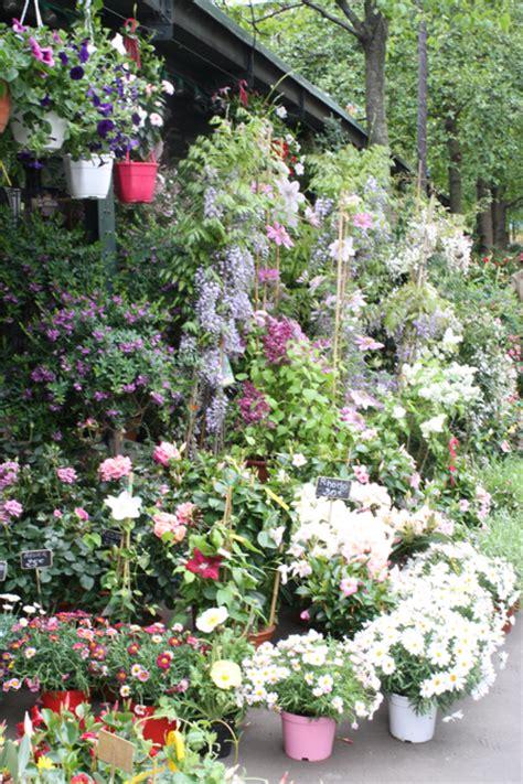 landscape garden centers near me izvipi com